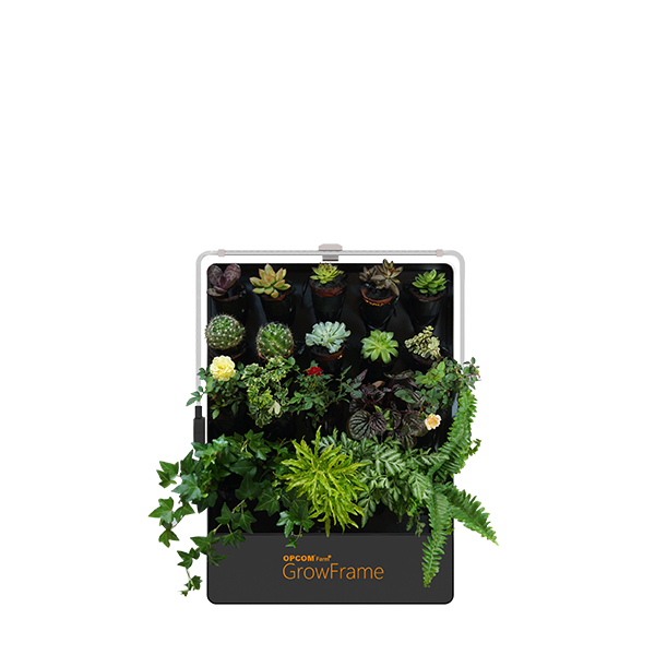 Indoor Hydroponic Gardening Systems - OPCOM Farm on indoor herb growing systems, indoor plant arrangements, indoor hydroponic plant systems, indoor garden lights, indoor fort kits, indoor hydroponic growing systems,