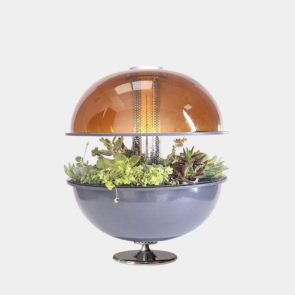 Grow Dome Garden (Preorder)