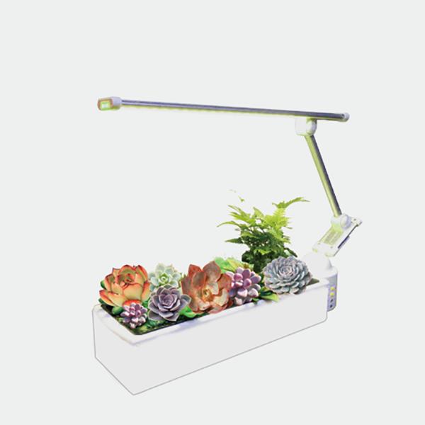 O2 Garden ‧ Succulent