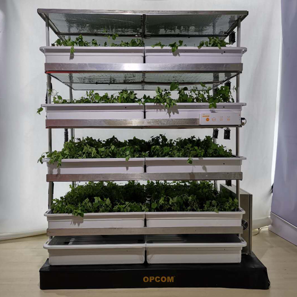 Grow Box 2 Pallet Hydro Farm