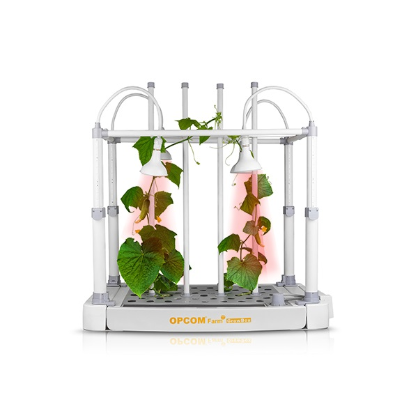 Tabletop Hydroponic Grow Box