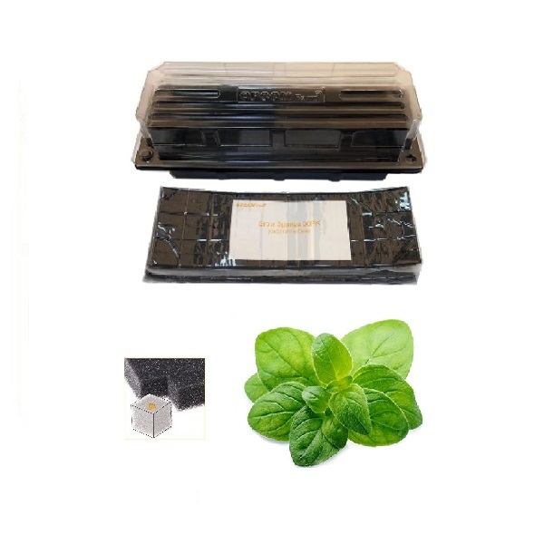 Grow Sponge-Oregano