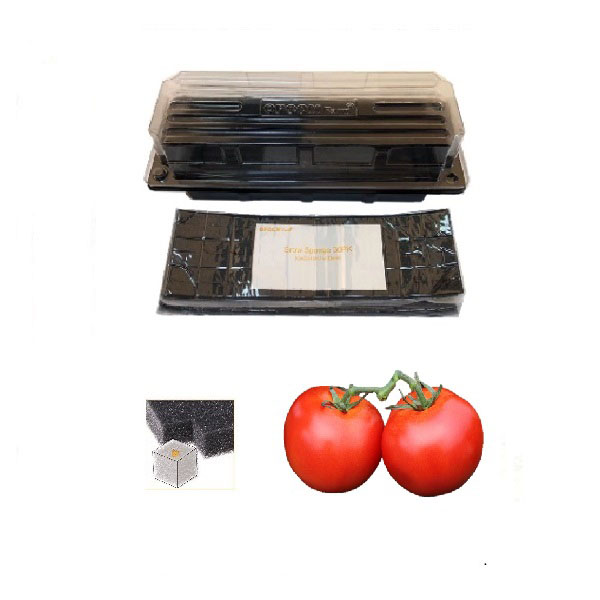 Grow Sponge-Mega Cherry Tomatoes