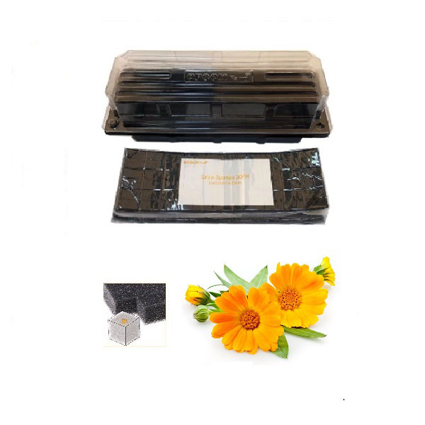 Grow Sponge-Calendula - Yellow/Orange (Flower Pod)