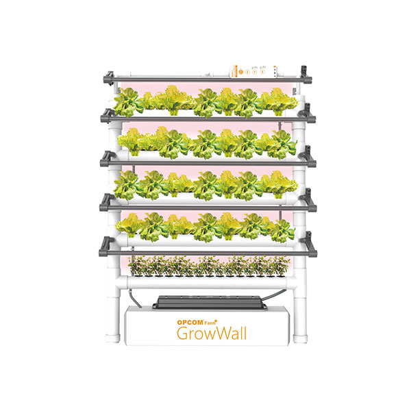 Grow Wall