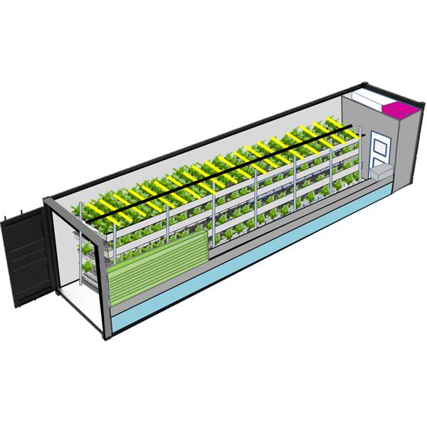 NFT Container AI Farm 40ft