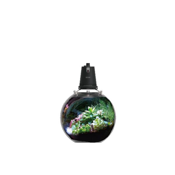 Microgreens Ball