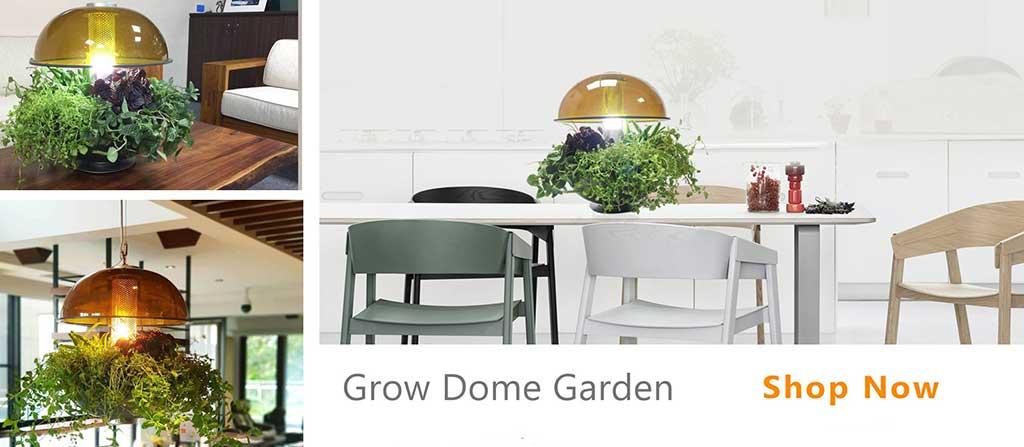 GrowBox-Hydroponics,hydroponic grow system,Grow Any Plant