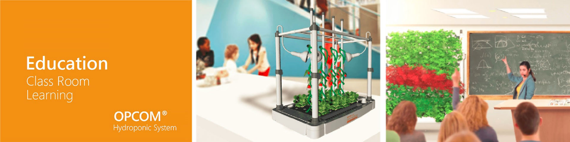Application for School-Class Room, Hydroponic System