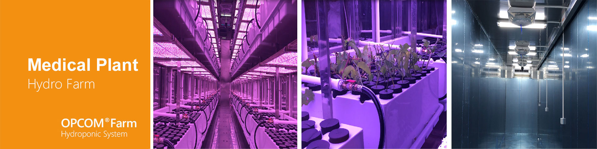 Application for Business-Hydro Farm, Hydroponic System